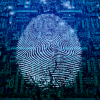 Information Security: Winning Strategies for a Changing Market