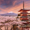 ASSIST Software – Economic Mission to Japan and Korea